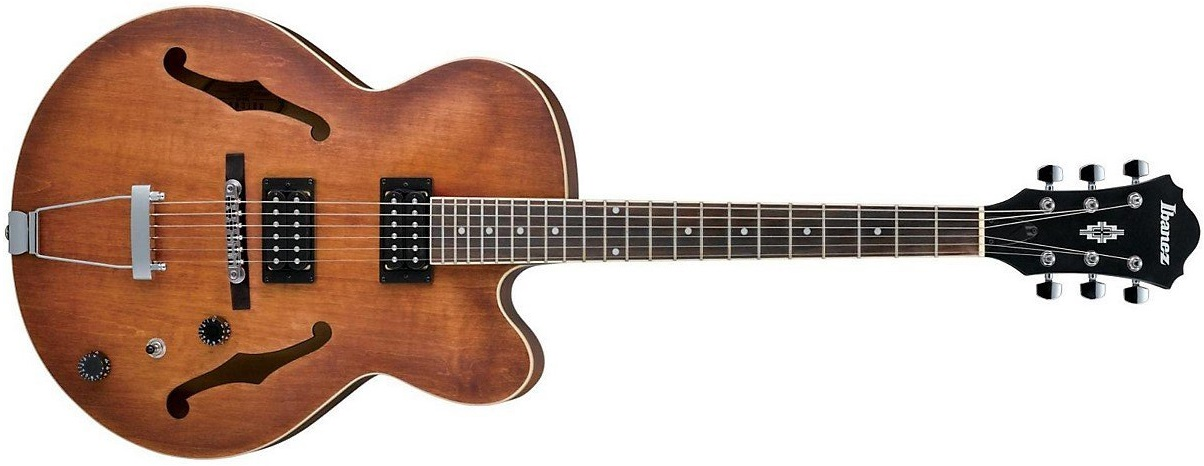 19 Mainline and Custom Hollow Body Electric Guitars