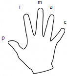 Right Hand Fingering Diagram