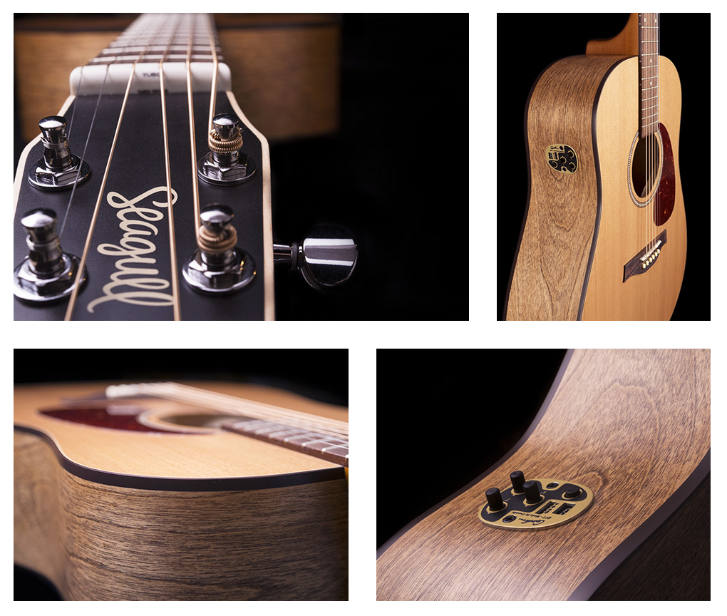 Seagull S6 Acoustic Guitar Photos