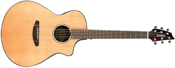 Breedlove Acoustic Guitar for Blues